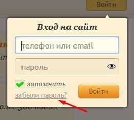 опция «забыли пароль»