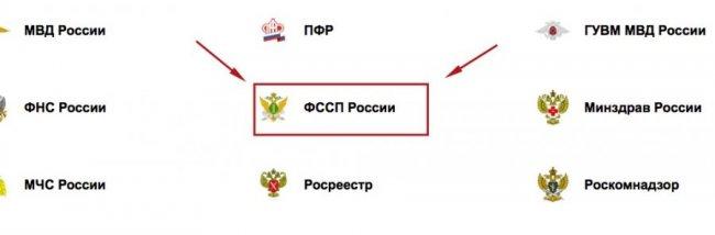 государственные организации